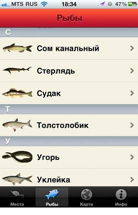 где ловить рыбу айфон